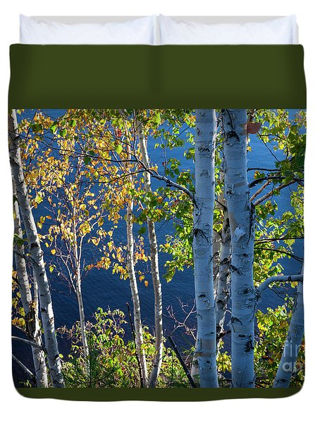 Duvet Cover featuring the photograph Birches On Lake Shore by Elena Elisseeva