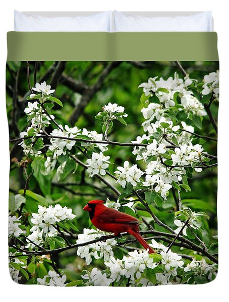 Bird And Blossoms Duvet Cover