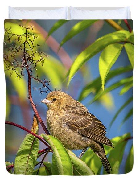 Bird Bush Blue Sky Duvet Cover