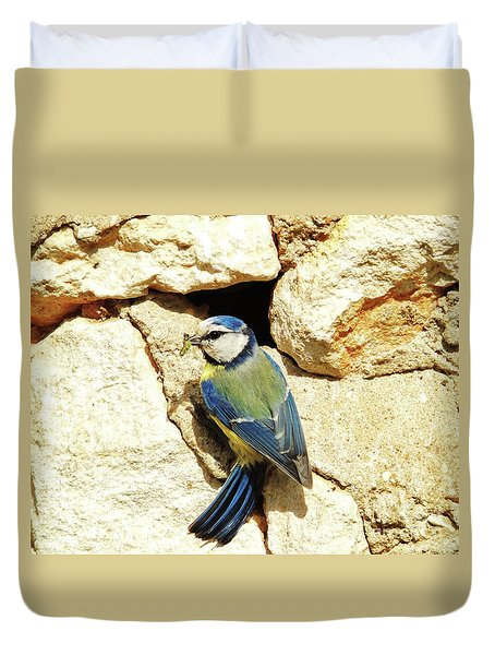Bird Feeding Chick Duvet Cover
