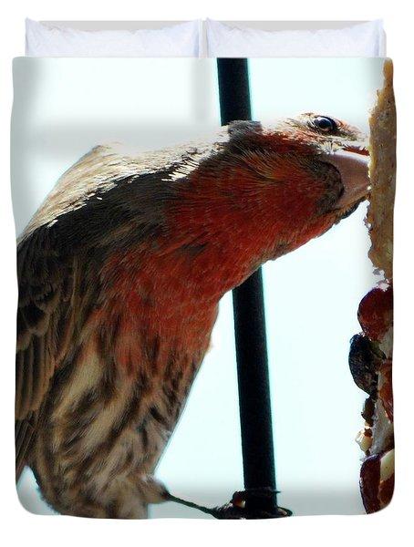 Bird Hits The Jackpot Duvet Cover