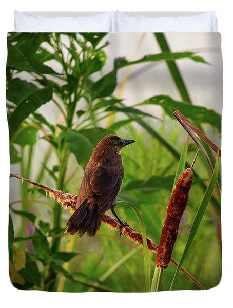 Bird In Cattails Duvet Cover