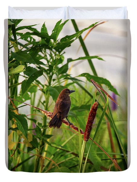 Bird In Cattails Duvet Cover
