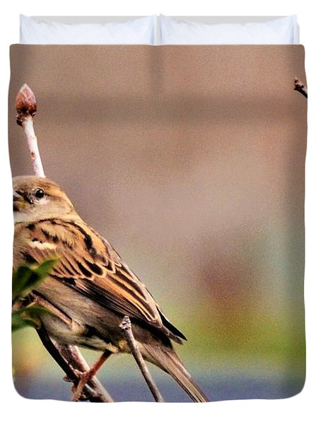 Bird In The Cold Duvet Cover