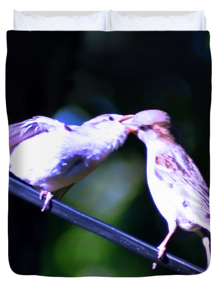 Bird Kiss Duvet Cover by Bill Cannon