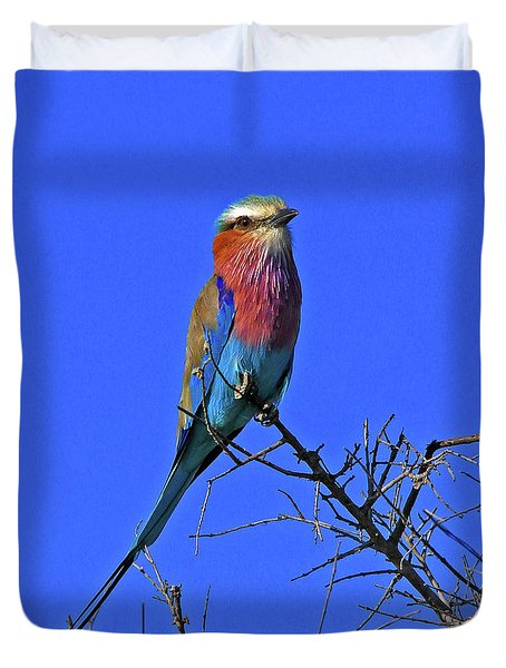 Bird - Lilac-breasted Roller Duvet Cover