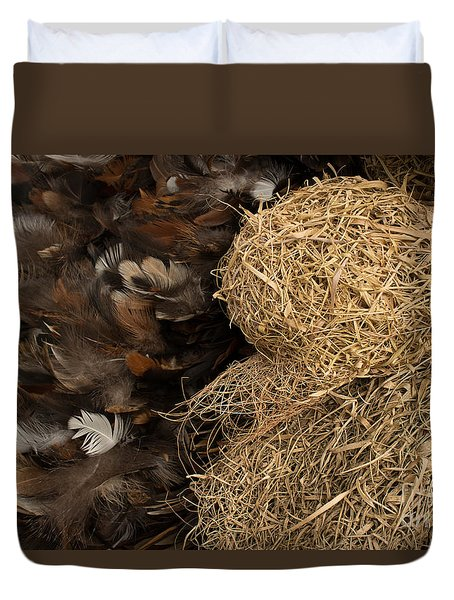 Bird Nest And Feathers Duvet Cover by Jason Rosette