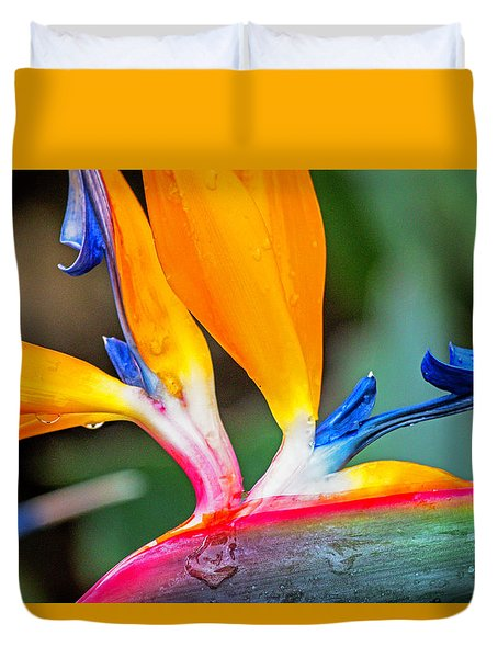 Bird Of Paradise After The Rain Duvet Cover
