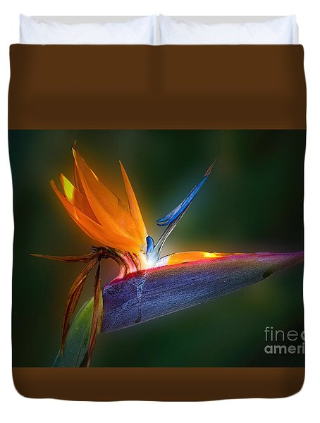 Bird Of Paradise Duvet Cover by Bonnie Barry