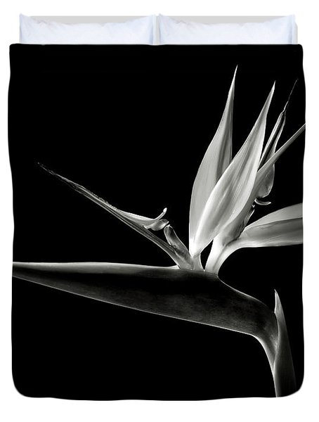 Bird Of Paradise In Black And White Duvet Cover