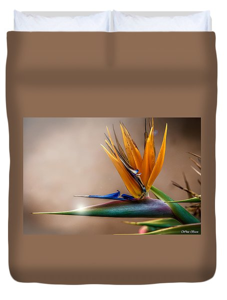 Bird Of Paradise Duvet Cover by Patrick Boening