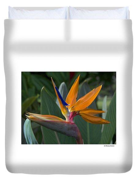 Duvet Cover featuring the photograph Bird Of Paradise by R Thomas Berner