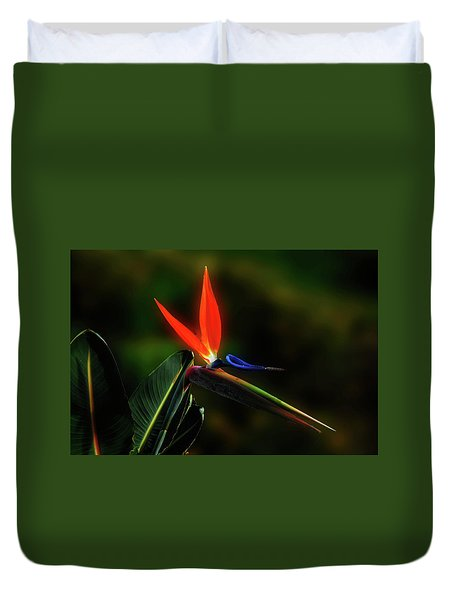 Duvet Cover featuring the photograph Bird Of Pardise by Joseph Hollingsworth