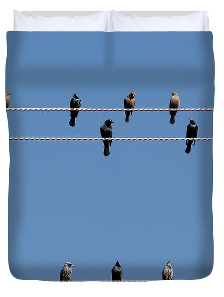 Bird On A Wire Duvet Cover by Christine Till