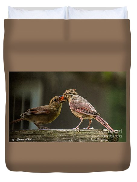 Bird Parenting Duvet Cover