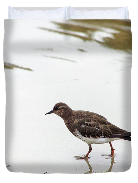 Duvet Cover featuring the photograph Bird Walking On Beach by Mariola Bitner