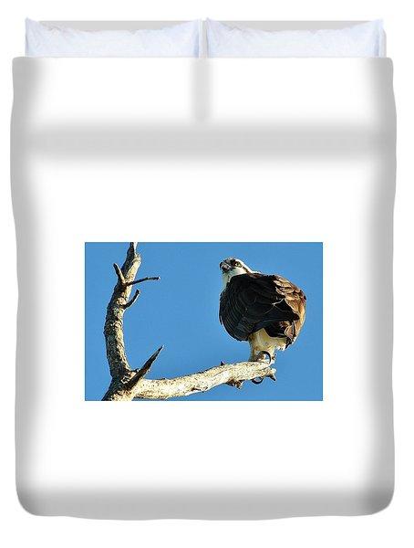 Birds 10 17 Duvet Cover