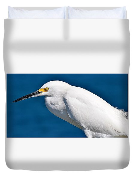 Birds 11 17 Duvet Cover