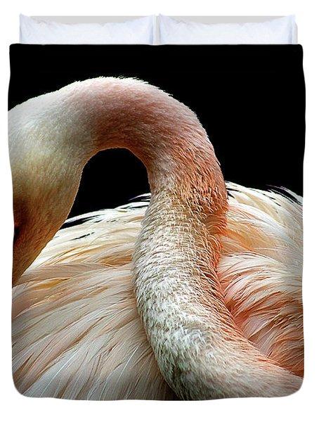 Birds 113 Duvet Cover
