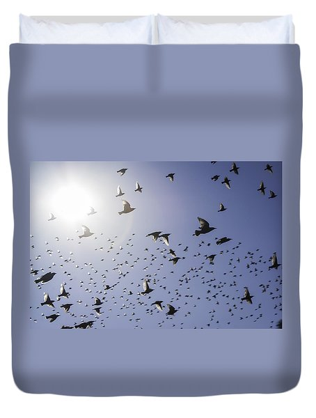 Birds Duvet Cover by Lynn Geoffroy