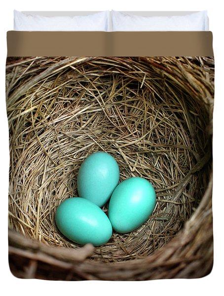 Birds Nest American Robin Duvet Cover by Christina Rollo