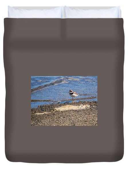 Birds Of Maine Duvet Cover