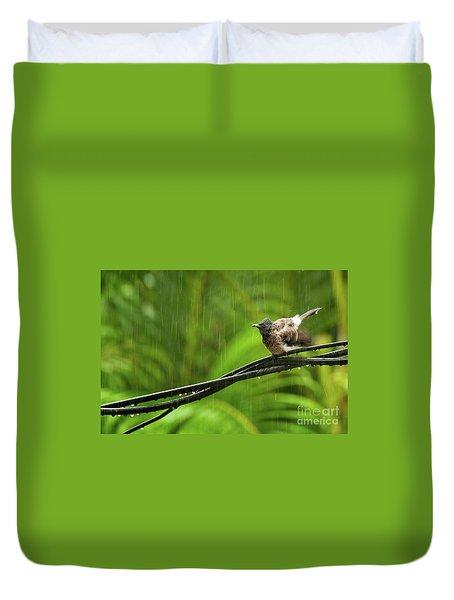 Birds Of Sri Lanka  Pycnonotus Cafer Duvet Cover by Venura Herath