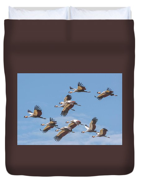 Birds Of The Same Feather. Duvet Cover