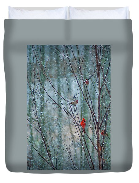 Birds On A Snowy Day Duvet Cover