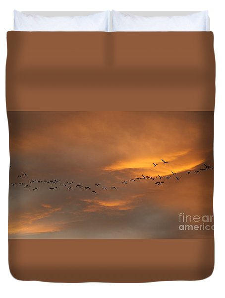 Birds Over San Miguel De Allende Duvet Cover by John  Kolenberg