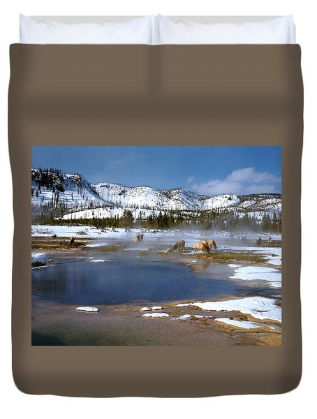 Biscuit Basin Elk Herd Duvet Cover by Ed  Riche