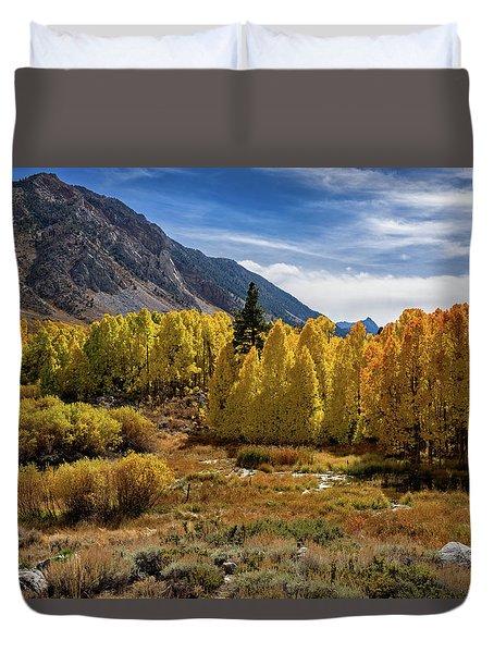 Bishop Creek Aspen Duvet Cover