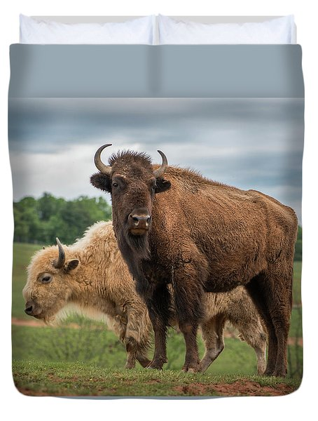 Duvet Cover featuring the photograph Bison 10 by Joye Ardyn Durham