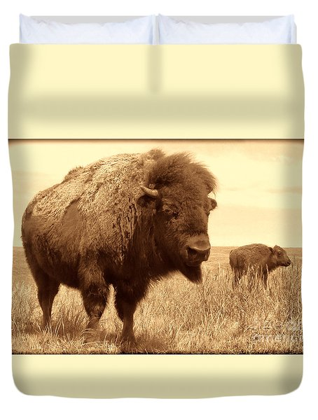 Bison And Calf Duvet Cover by American West Legend By Olivier Le Queinec