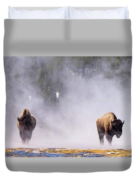 Bison At Biscuit Basin Duvet Cover