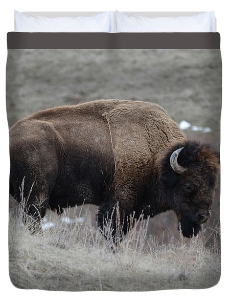 Bison Bull Duvet Cover
