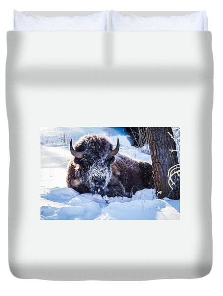 Duvet Cover featuring the photograph Bison At Frozen Dawn by Yeates Photography
