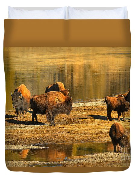 Duvet Cover featuring the photograph Bison Family Crossing by Adam Jewell