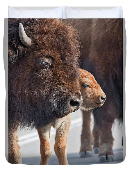 Bison Family Duvet Cover
