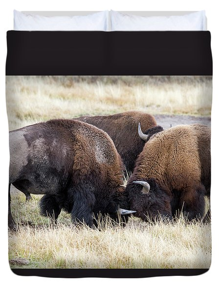 Bison Fight Duvet Cover