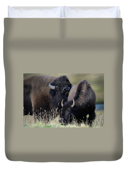 Bison Grasses Duvet Cover