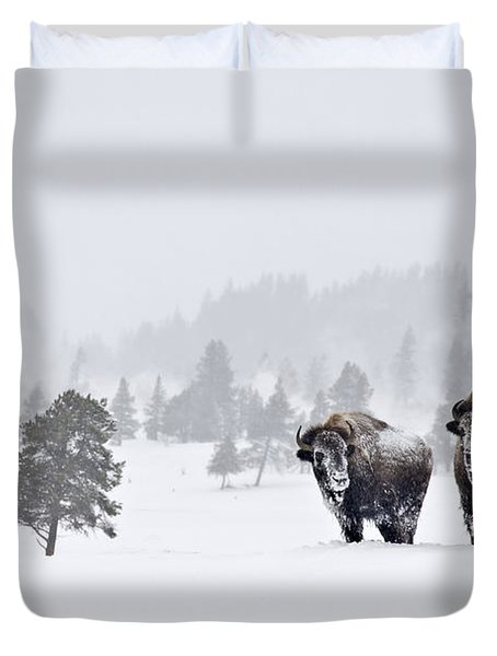 Bison In The Snow Duvet Cover