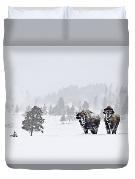 Duvet Cover featuring the photograph Bison In The Snow by Gary Lengyel