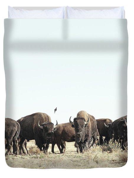 Bison Duvet Cover by Lauren Mancke
