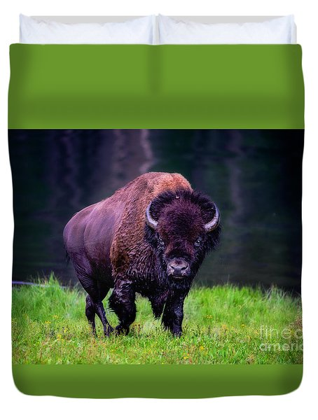 Bison Of Yellowstone Duvet Cover by Jim  Hatch