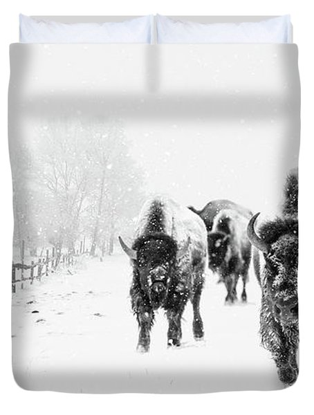 Bison On The Run Duvet Cover