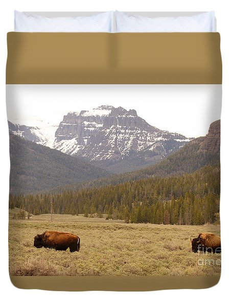 Duvet Cover featuring the photograph Bison Pair Beneath Mountains by Max Allen
