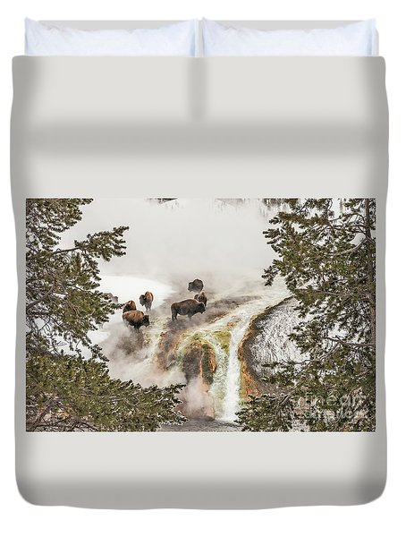 Duvet Cover featuring the photograph Bison Taking A Steam Bath by Sue Smith