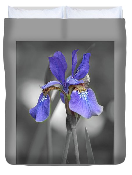 Duvet Cover featuring the photograph Black And White Blue Bearded Iris by Brenda Jacobs