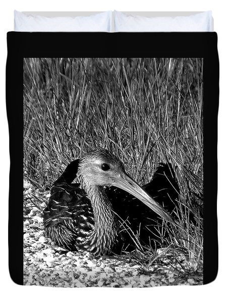Black And White Resting Limpkin Bird Duvet Cover